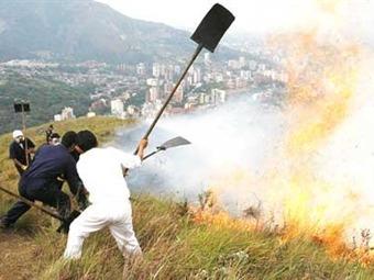 Cinco departamentos del centro del país adoptan medidas preventivas de incendios forestales