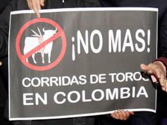 """""""No hay garantías en la corte sobre fallo de corridas de Toros en Bogotá"""""""