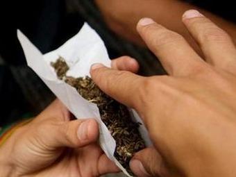 Más de cinco sentencias de la corte dan viabilidad a marihuana terapéutica