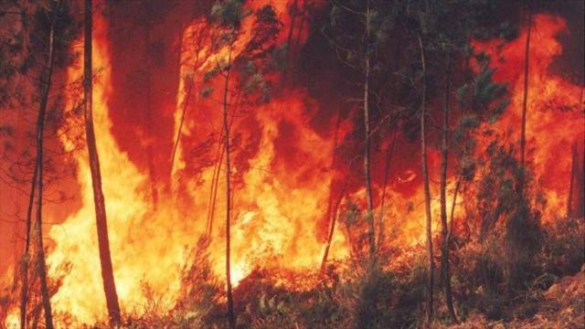 Alerta roja en 16 municipios de Boyacá por incendios forestales