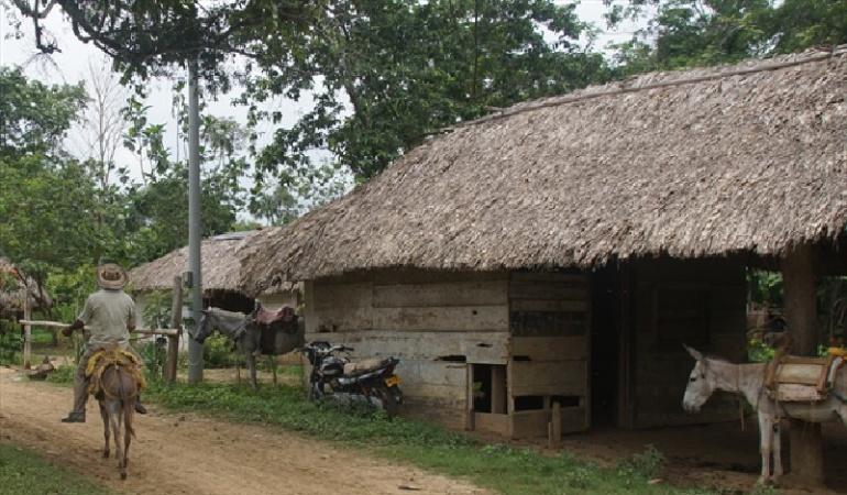 Ordenan devolver tierras a campesinos despojados por paramilitares en Turbo
