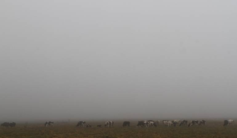 Los campos de Boyacá están amaneciendo cubiertos de Hielo: Los campos de Boyacá están amaneciendo cubiertos de hielo