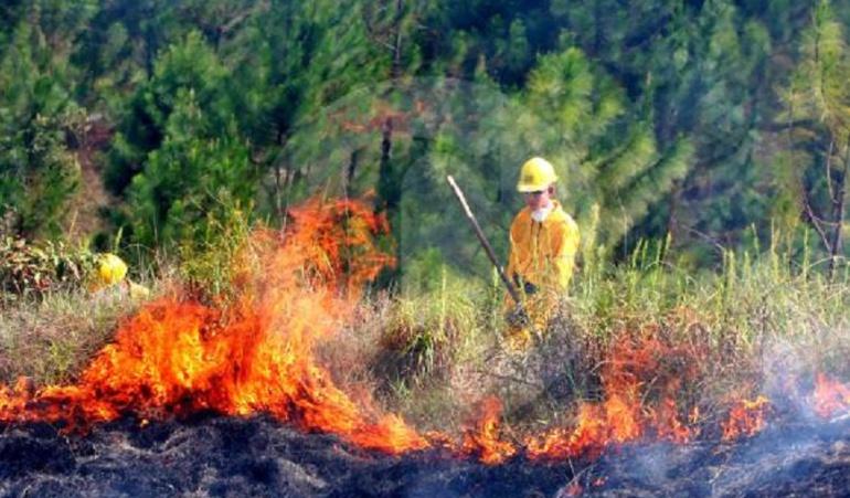 Ideam Incendios Forestales Alerta Roja: El Ideam mantiene alerta roja y naranja por posibles incendios forestales
