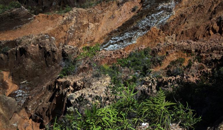 Minería Páramos: Corte Constitucional tumbó minería en los páramos