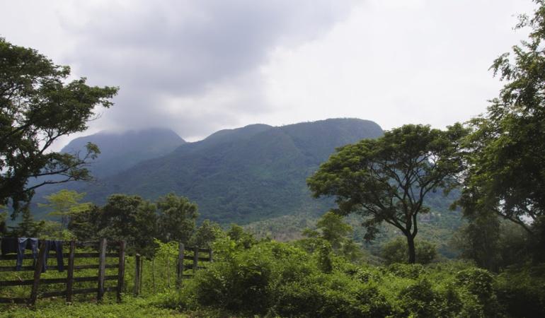Restitución de tierras en Colombia: Corte protege a familias que reclaman baldíos en la hacienda Bellacruz