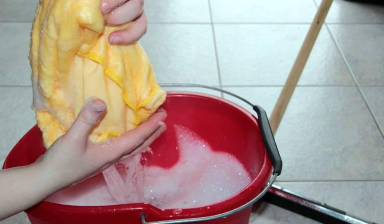 Primas para las empleadas domésticas: El extraño caso del empleado doméstico