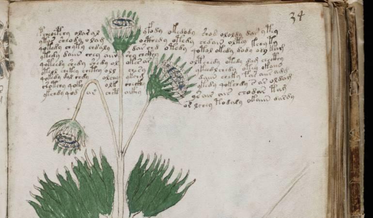 El enigmático libro que nadie puede leer sale a la venta: Manuscrito Voynich, el enigmático libro que nadie puede leer
