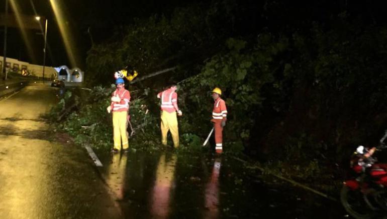 Vía al Llano Derrumbe: Habilitan paso a un carril en vía Bogotá - Villavicencio tras deslizamiento de tierra