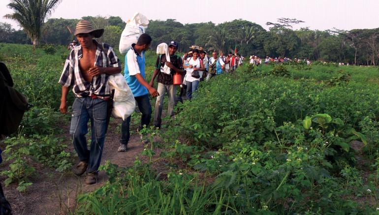 Reclamantes de tierra: Corte ordena mesa de trabajo por reclamos de tierra de El Porvenir