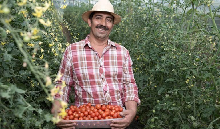 Los empresarios del campo progresan de la mano del Banco Agrario