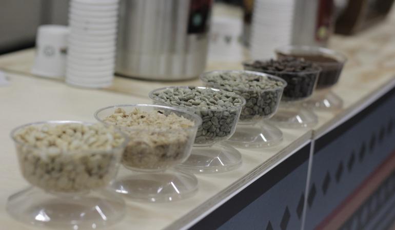 Producción de café en Colombia alcanzó los 14,4 millones de sacos