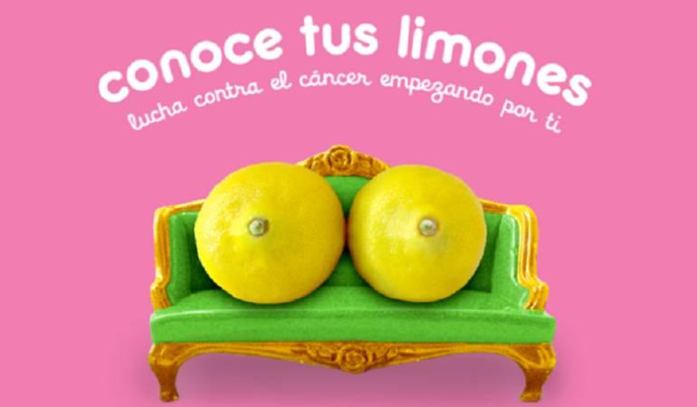 Cáncer de mama: Los limones que ayudan a entender las señales del cáncer de mama
