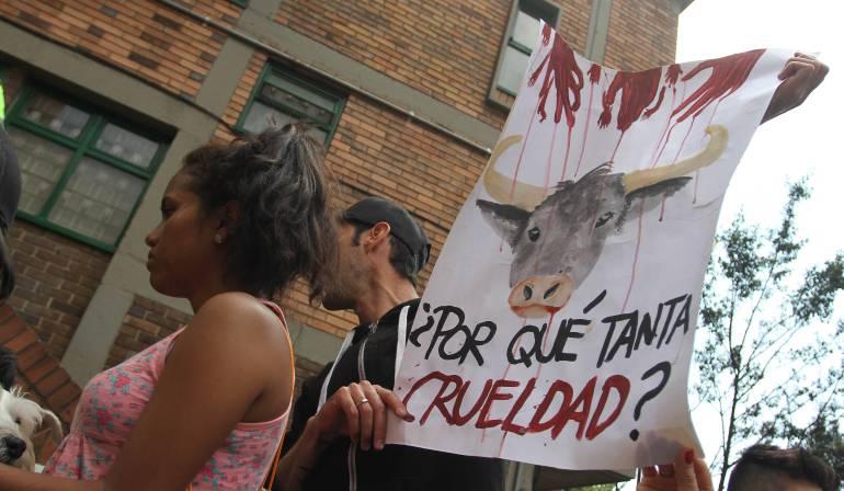¿Dónde está la bolita?, blog de Carlos Obregón sobre taurinos y antitaurinos: Una fiesta muy brava