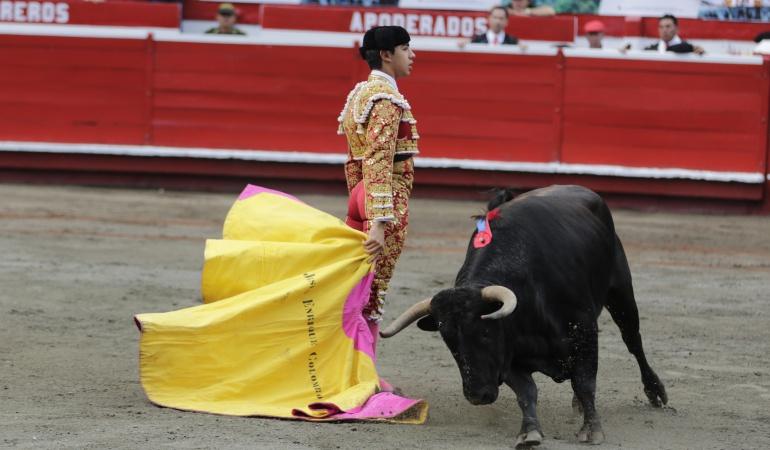 Corridas de toros: Congreso tendrá dos años para legislar sobre corridas de toros: Corte Constitucional