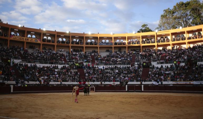 Maltrato animal: Corte Constitucional no debatirá segunda demanda sobre corridas de toros