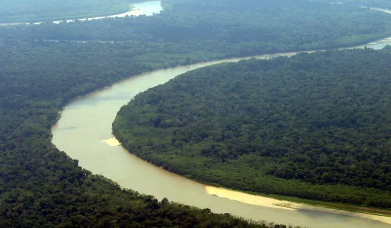 Deforestación en Guaviare: Autoridades ambientales y públicas trabajan articuladamente para ejercer la Gobernanza Forestal en Guaviare