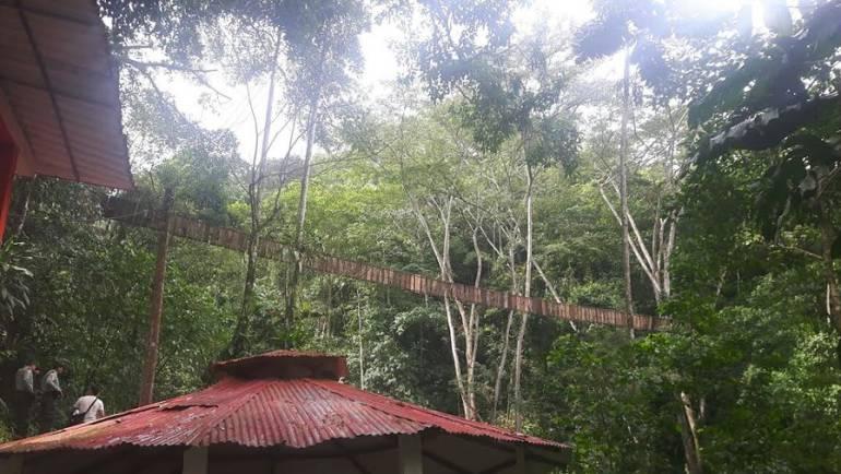 Puente colgante que cayó en Villavicencio: Imputan cargos a dueños del puente colgante en Villavicencio donde fallecieron 9 personas