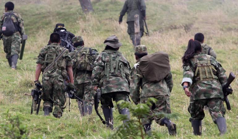 Onu pide aplazar la fecha fijada para entrega de armas: Jefe de misión de verificación de la ONU pide reevaluar fechas de entrega de armas de las Farc