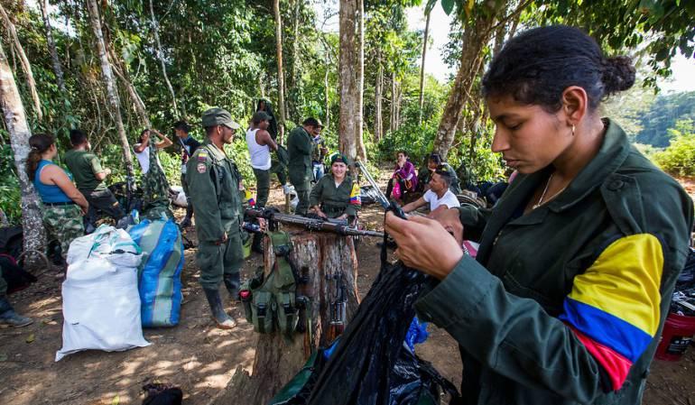 Emergencia salud zona concentración de las Farc: Emergencia de salud en zona veredal en Guaviare