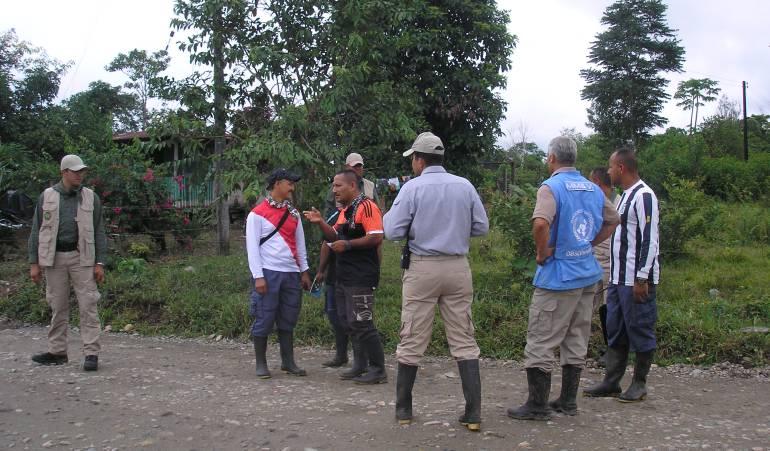 Farc desertores en Putumayo: Tres guerrilleros de las Farc habrían desertado en Putumayo