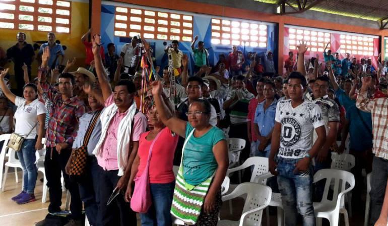 Familias de Caquetá se unen al programa de sustitución de cultivos ilícitos