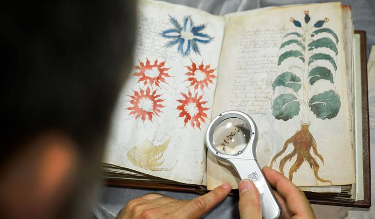La Universidad de Yale almacena en una bóveda uno de los máximos enigmas del conocimiento humano: el Manuscrito Voynich.
