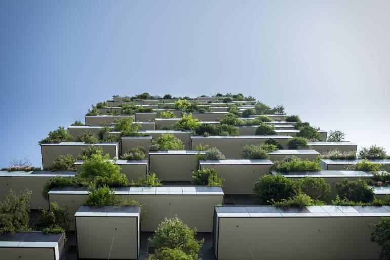 Convierta su casa en un hogar verde
