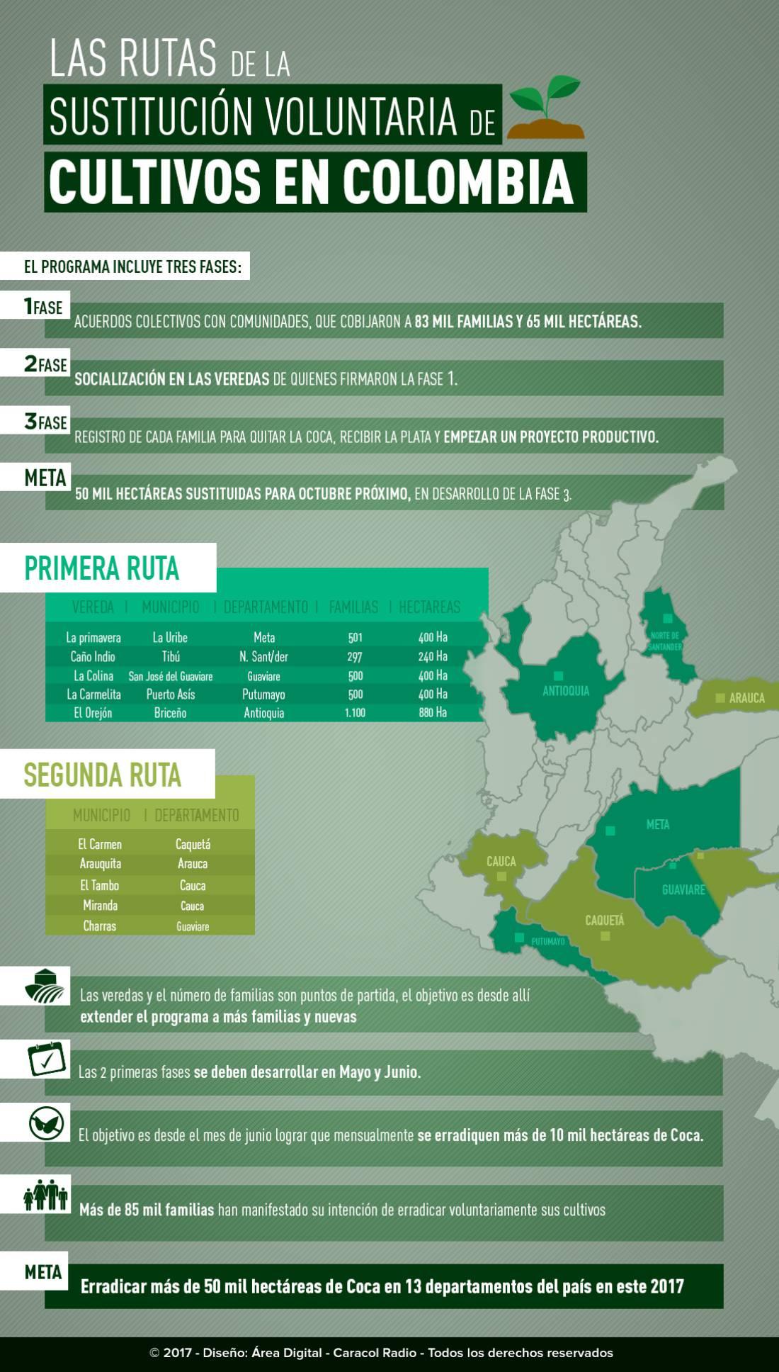 Proceso paz Colombia: La ruta de la sustitución voluntaria de cultivos en Colombia