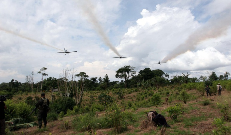 Corte fija condiciones que podrían reanudar las aspersiones aéreas con glifosato