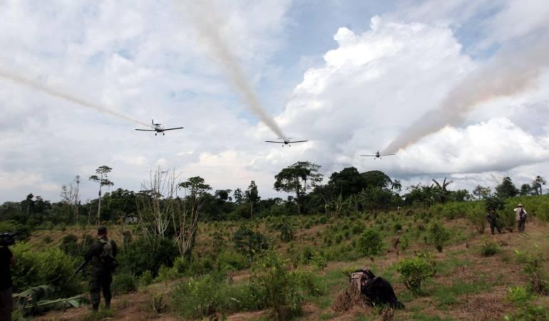 Fumigación cultivos ilícitos: La fumigación aérea no es una opción en este momento: MinPosconflicto