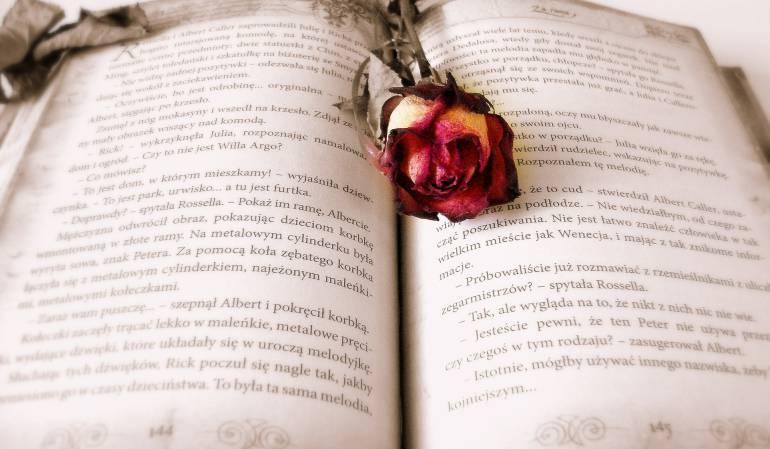 """Literatura estadounidense: La """"Semana de los libros prohibidos"""" reivindica en EE.UU. la libertad de leer"""