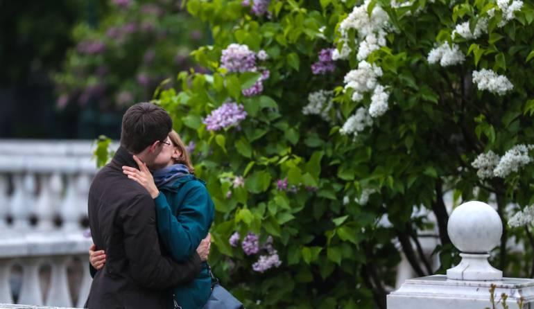 Amor de pareja: Seis elementos para el éxito en el amor de pareja