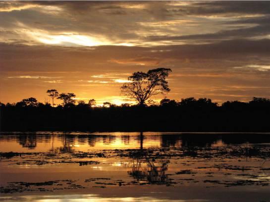 El alojamiento en la Reserva Natural Irapai, que se encuentra ubicada en el municipio de Puerto Alegría sobre el Río Amazonas, a 25 kilómetros de Leticia.