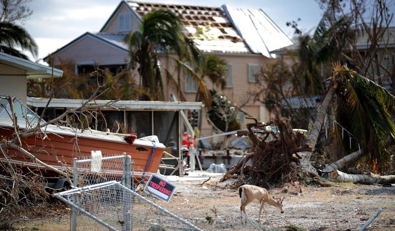 Huracán Irma: Levantan el toque de queda en los Cayos de Florida impuesto tras huracán Irma