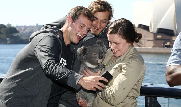 Selfie con un koala