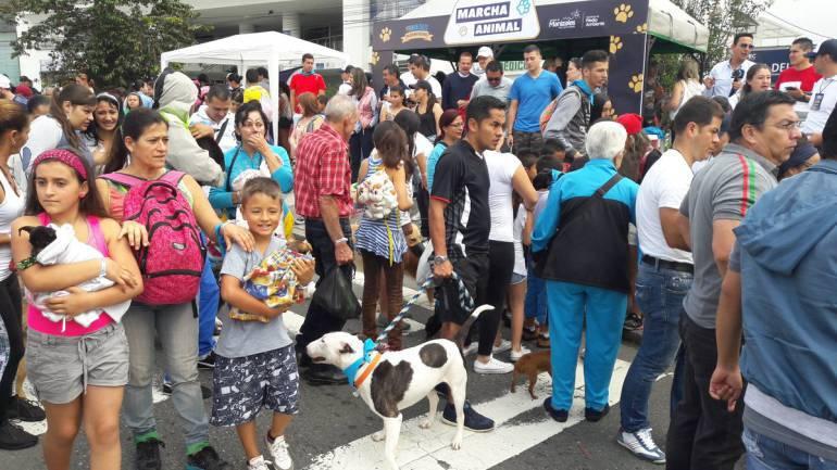 Manifestaciones por la defensa de la vida animal: En varias ciudades del país habrá marchas para defender los derechos de los animales