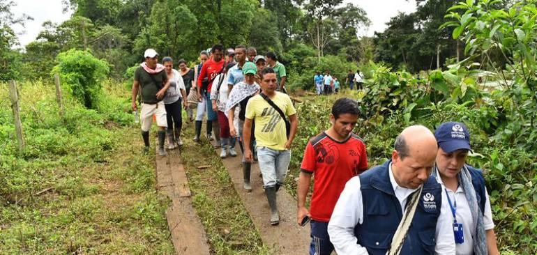 Procuraduría suspende a policías por hostigamiento a cocaleros en Tumaco: Procuraduría ordena suspensión de oficial y suboficial por hostigamiento a comisión en Tumaco