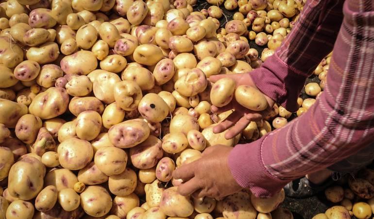 Alimentos en diciembre Ministerio de Agricultura: Acuerdo para congelar precios de alimentos en diciembre está casi listo