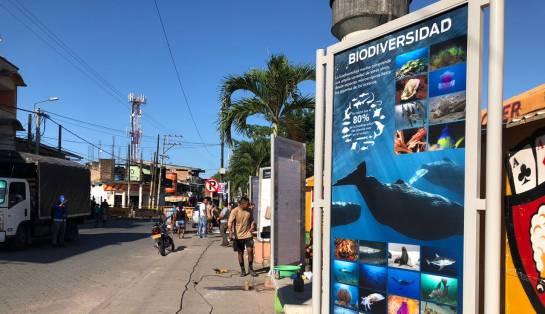 Lanzan campaña para proteger el ecosistema de la costa pacífica colombiana: Una nueva generación defenderá los océanos en Colombia