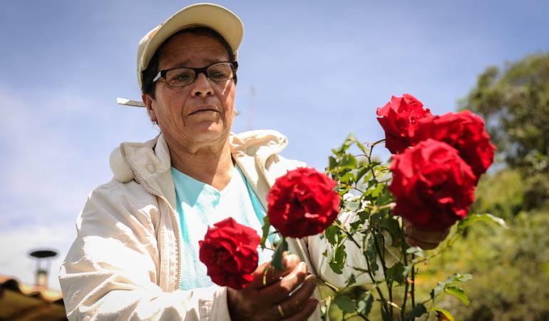 San Valentín, la fórmula de Colombia para superar la industria de EE.UU.