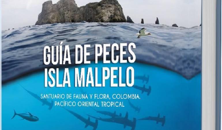Libro, Guía de Peces, Isla Malpelo