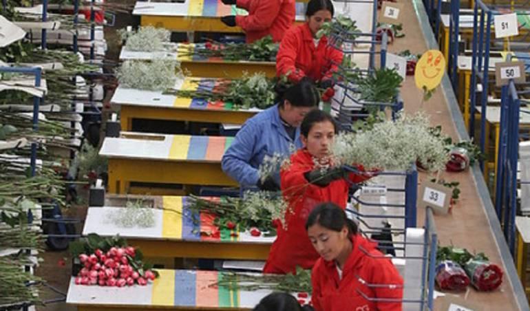 Trabajadores de Flores