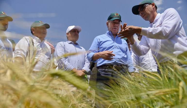 Santos pregunta por Twitter si se debe eliminar la Ley seca en elecciones