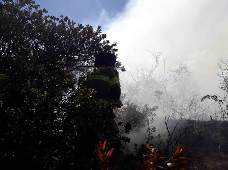 Incendios forestales Guaviare