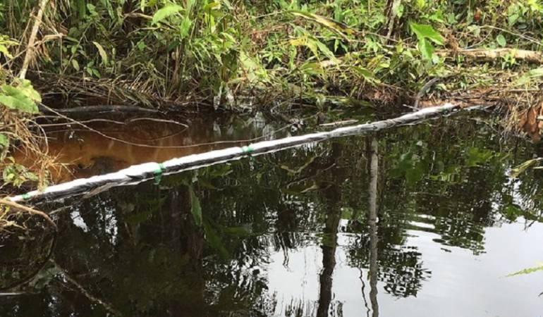 Suspenden ecoturismo en Serranía de Las Quinchas por derrame de petróleo: Suspenden ecoturismo en Serranía de Las Quinchas por derrame de petróleo
