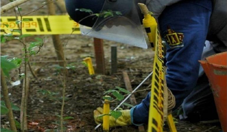Desminado en Colombia: Este año, 119 municipios quedarán libres de minas antipersona