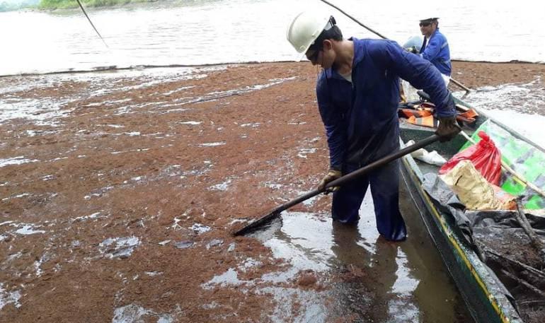 La naturaleza se recuperará sola del derrame de Crudo: ONU Medio Ambiente