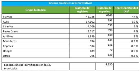 Biodiversidad en zonas libres de minas: Detectan más de 96000 datos biológicos en los 37 municipios libres de minas