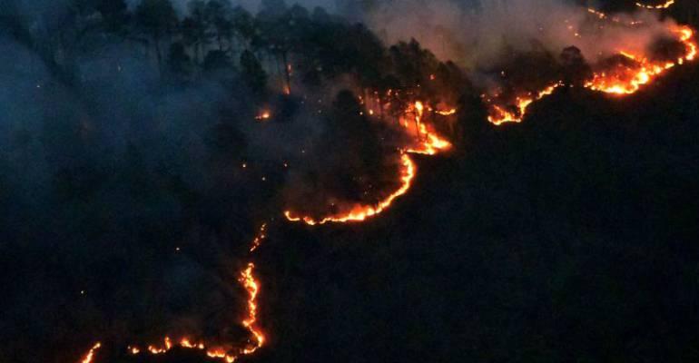 En portugal crean un software que alerta si hay incendios forestales tecnologia caracol radio - Que hay en portugal ...