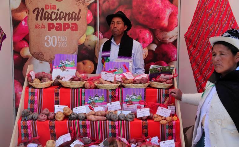 Día de la papa: Perú festeja día nacional de la papa con desfile de sus miles de variedades